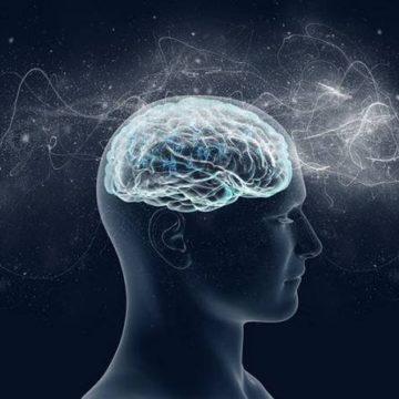 Неожиданные факты о работе нашего мозга