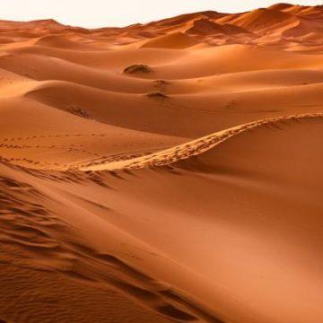 Как солнечные и ветряные электростанции повлияют на климат Сахары: мнение ученых