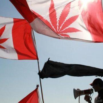 Канада проведет масштабную наркоамнистию