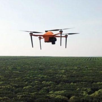 Искусственный интеллект и дроны позволят следить за фермами на микроуровне