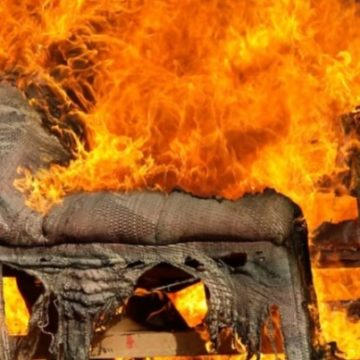 Это покрытие из растений из глины способно спасти вещи от огня