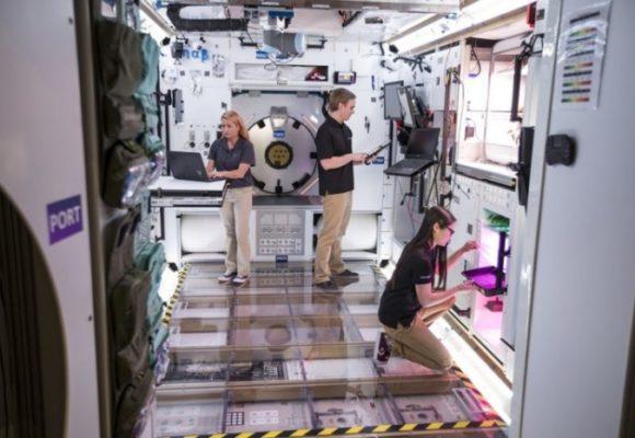 Lockheed Martin создала полноразмерный прототип жилого модуля окололунной станции Gateway